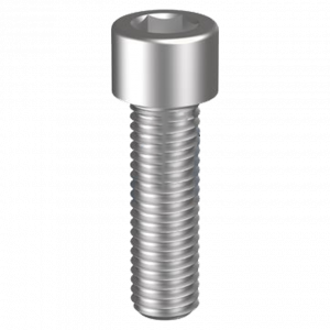 Socket Head Cap Screw SS304 Stainless Steel #
